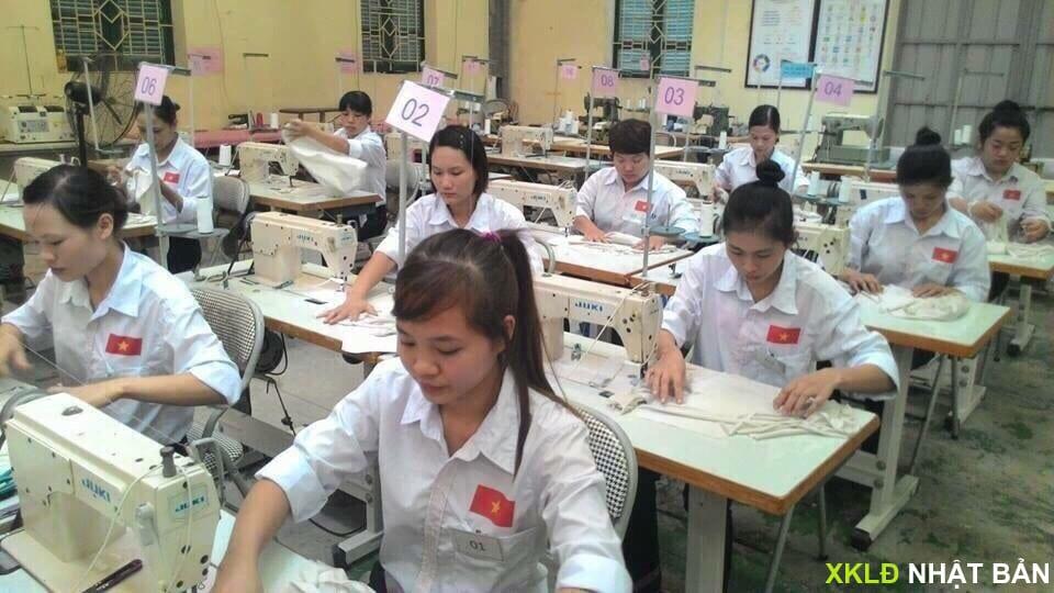 Nhật Bản | Đơn hàng may mặc quần áo trẻ em phụ nữ lương 25 triệu++ 7