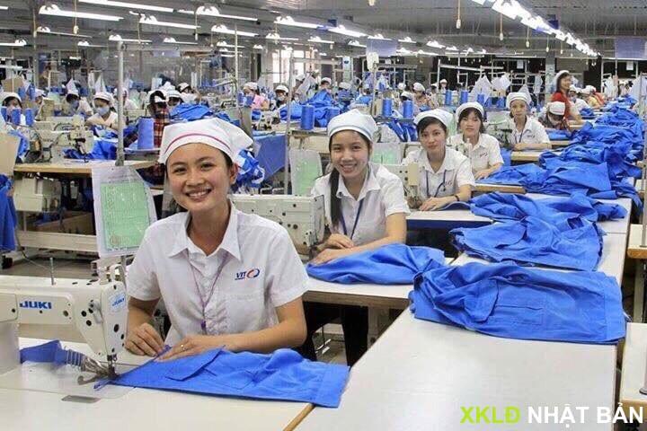 Tuyển 15 nữ đơn may quàn áo phụ nữ trẻ em gấp 7